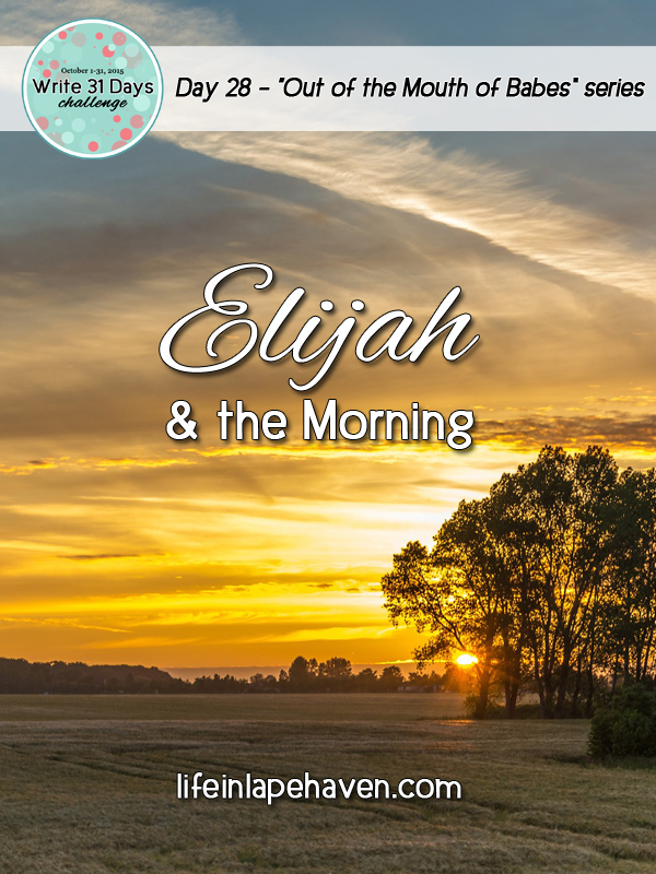 Life in Lape Haven: Write 31 Days - Elijah and the Morning. Determining to make each day wonderful by choosing a positive attitude.