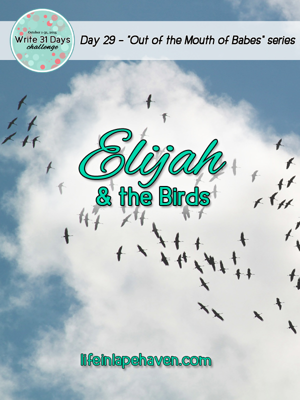 Life in Lape Haven: Write 31 Days - Elijah and the Birds. Expecting God to provide in unusual ways.