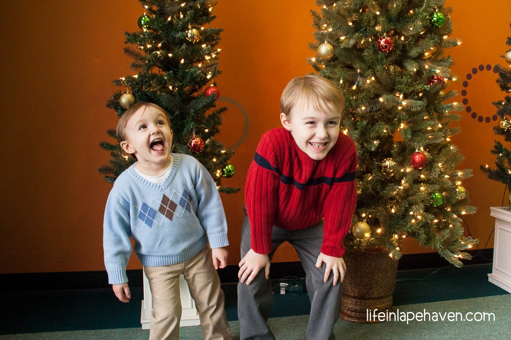 Life in Lape Haven: Why You Can't Give Jesus a Dinosaur: Christmas According to My Boys - I interviewed my children about all things Christmas and why we celebrate Christmas.