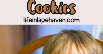 Life In Lape Haven - Tried It Tuesday: Easy, Chewy Peanut Butter Cookies. A simple and simply delicious peanut butter cookie recipe for crunchy, yet chewy cookies.