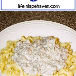 Life in Lape Haven: Tried It Tuesday: Easy Beef Stroganoff. This quick, easy recipe for Beef Stroganoff has become a favorite of my whole family. Plus you can make the sauce ahead & freeze it to make an extra fast, tasty dinner.