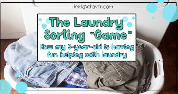 The Laundry Sorting Game