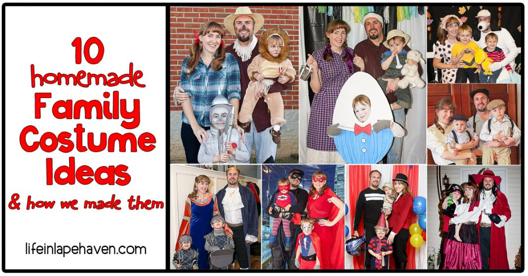 10 Homemade Family Costume Ideas & How We Made Them - Life in Lape Haven. Our family has done theme birthday parties and dress up a lot in the last 5 years. Here are ten fairly easy, inexpensive, and fun family theme costumes for parents and children.
