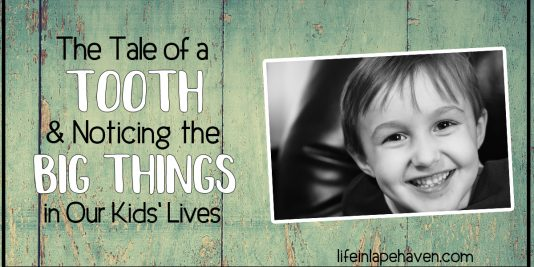 The Tale of a Tooth & Noticing the Big Things in Our Kids' Lives - Ever have a parenting day when something kind of big flies under your radar? I did. Thankfully it helped me notice something even bigger. And it all started with a tooth!