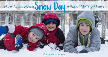 How to Survive a Snow Day without Melting Down - Life in Lape Haven. While snow days, delays, & sick days can be an inconvenience to our every day routine, there are plenty of ways to make the most of the unexpected time and make some special memories with our kids.